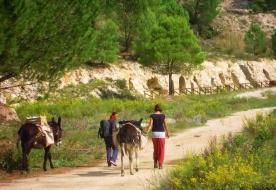 Треккинг на Сицилии -