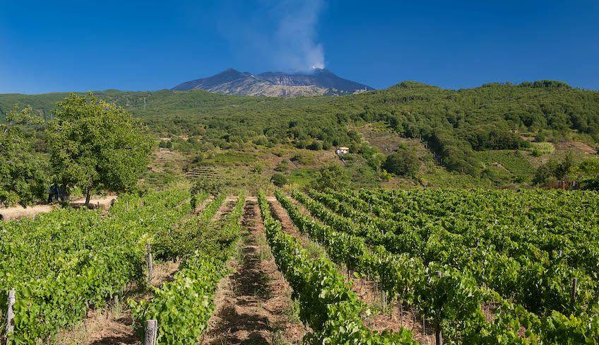 Короткий отпуск на Сицилии -