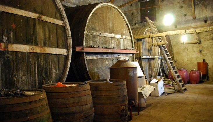 купить вино на сицилии сицилия винные туры винная история сицилия этна