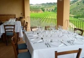 лучшее вино сицилии - дегустация вина сицилия италия