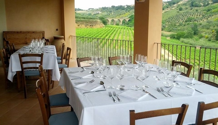 лучшее вино сицилии дегустация вина сицилия италия посетить сицилию кальтаджироне