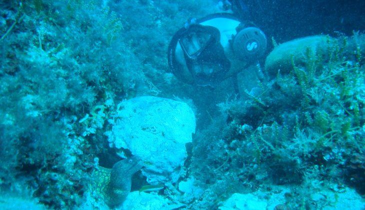 сноркелинг курс - подводные глубины Сицилия