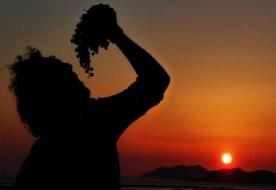 винная культура сицилии вина сицилии загородные отели разнообразие винограда сицилии марсала