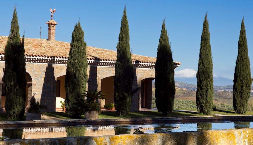 вино с сицилии отпуск сицилия разнообразие вин винные туры сицилия отдых