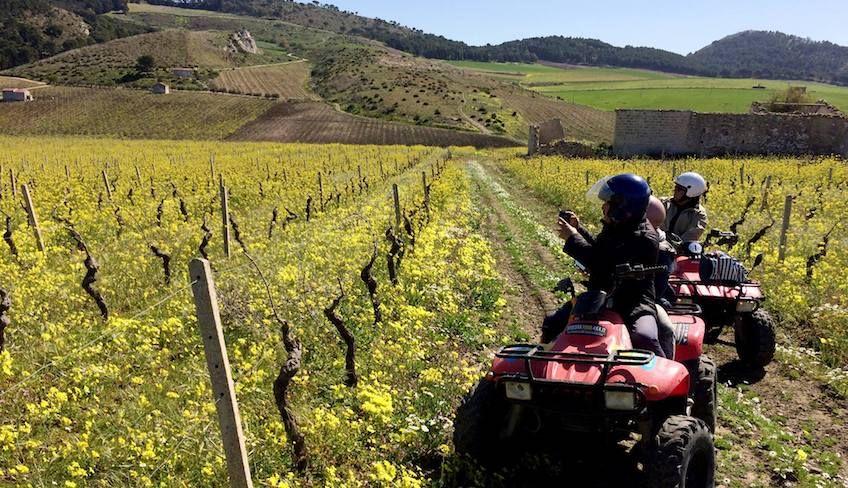 Посетить Седжесту - аренда квадроцикла Сицилия