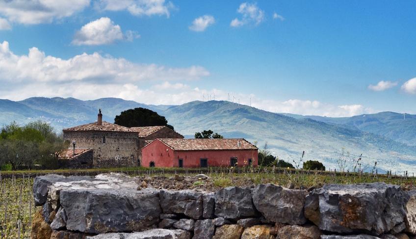 дегустация вина сицилийское вино попробовать сицилию Этна