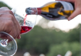 дегустация вина - миндальное вино сицилия