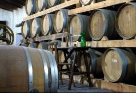 дегустации сицилия - сицилийские вина винодельня