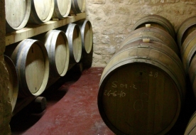 вина сицилии - сицилия виды вина