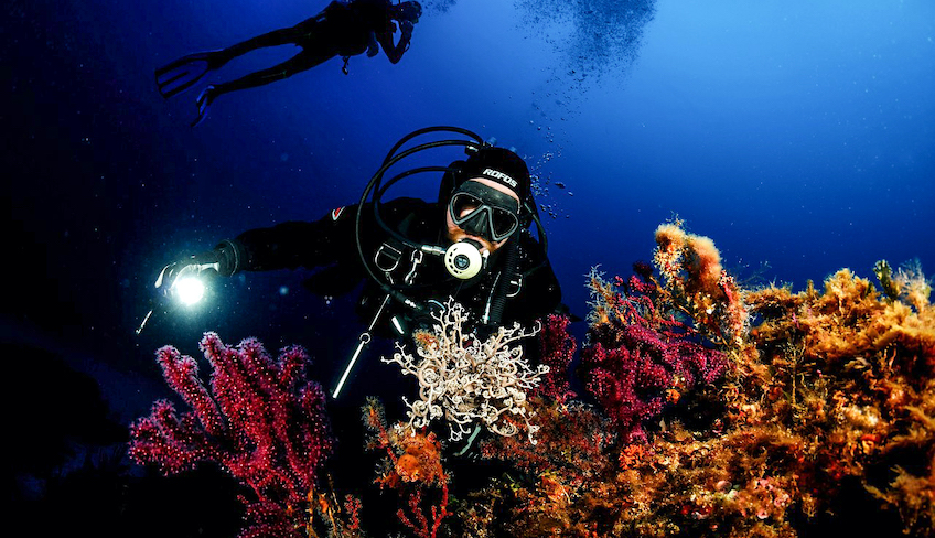 дайвинг центр мареттимо активный летний отдых путешествия со SCUBA-дайвингом марсала