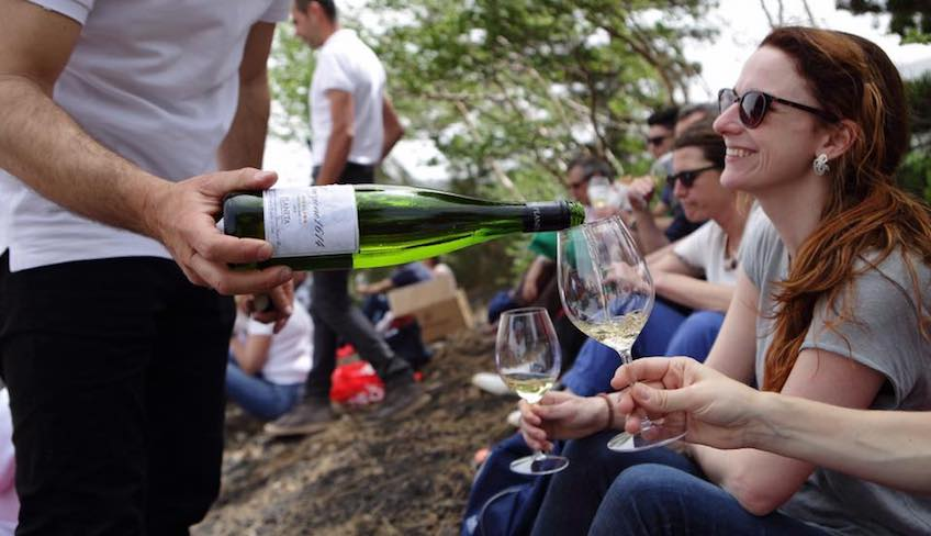 дегуста вин винодельня гора этна