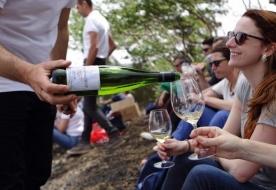 винодельня бенанти сицилийские вина вина этны гора этна
