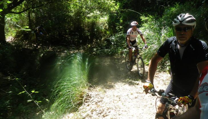 парк мадоние мадоние природный заповедник