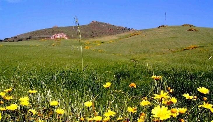 Природа Сицилии - парки Сицилии